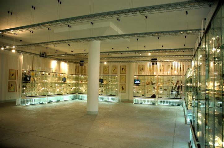 The Museum of Pertosa (Vallo di Diano)